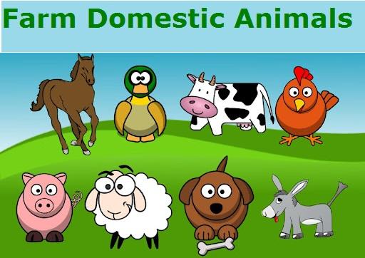 Farm Domestic Animals (Домашні тварини на фермі) - Словниковий запас